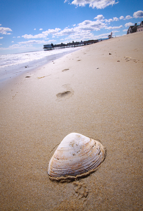 oob old orchard beach sand surf shell sea clam coast maine pier wooden tourist tourism