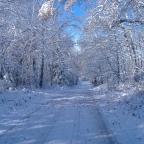 Winter Road [PHOTO]