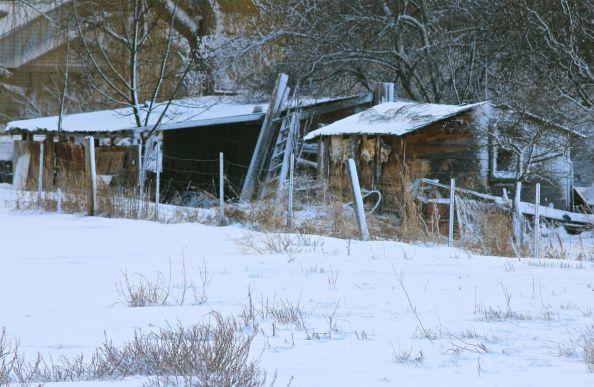dilapidated broken old barn structure wooden snow down shed used beat falling apart
