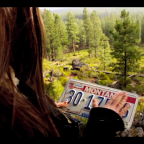 Freedom is a Bag Full of License Plates