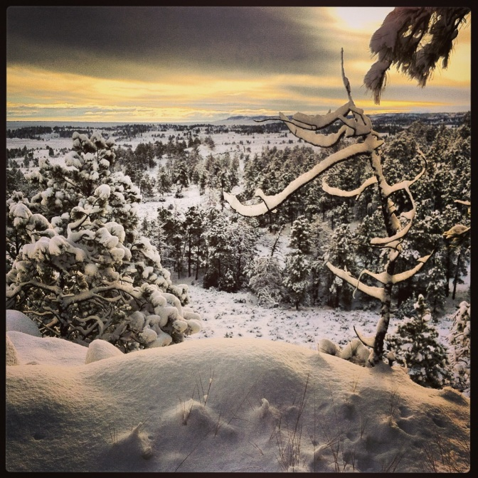 Winter landscape, Acton, MT (Taken Jan. 1st, 2014 - here's to a new year of adventures!)