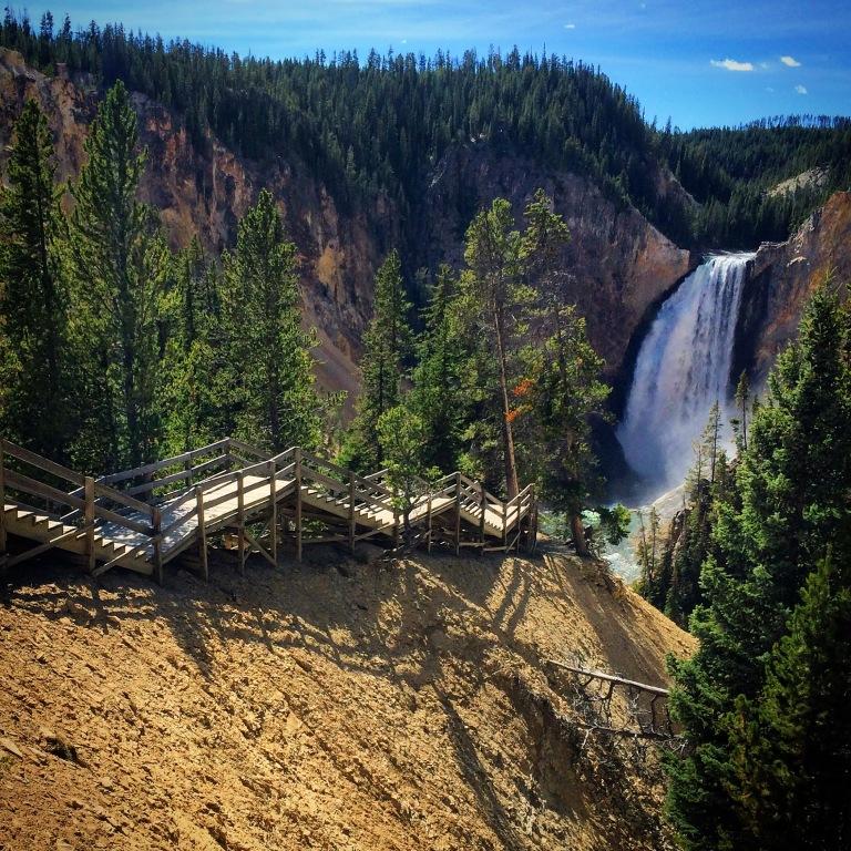 lower falls, yellowstone national park, wyoming