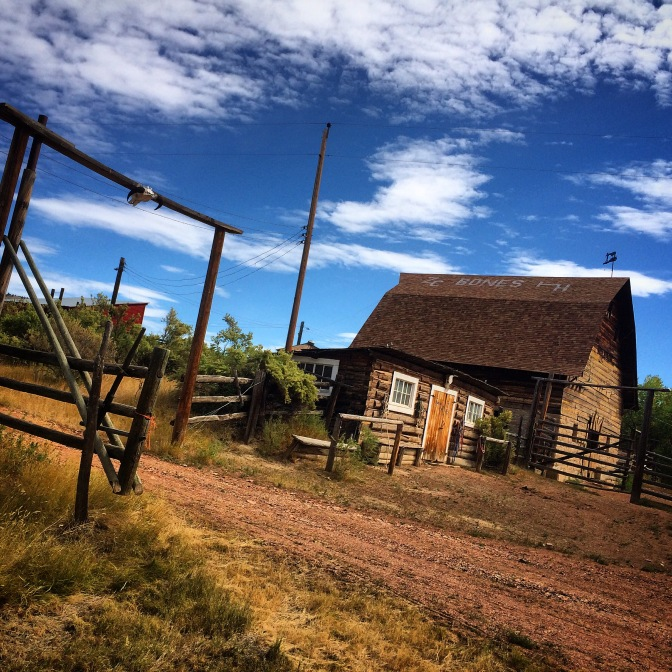 Cattle ranch, Birney, Montana.